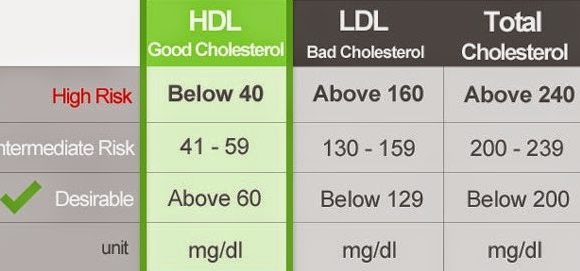 Normal Cholesterol Levels – The good and the bad about cholesterol