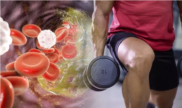 best exercise to lower cholesterol